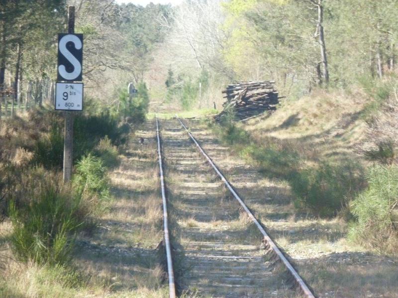 Le Train de l'Albret sur les rails ? - Page 2 34p12710