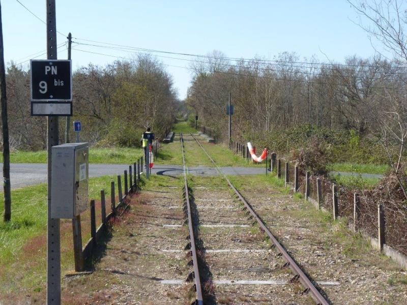 Le Train de l'Albret sur les rails ? - Page 2 35p12710