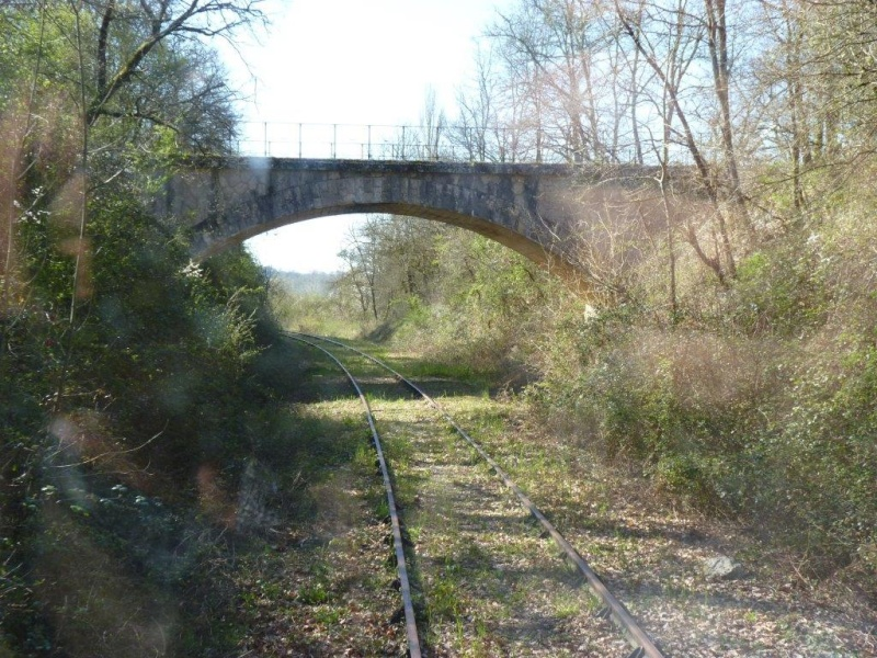 Le Train de l'Albret sur les rails ? - Page 3 43p12710