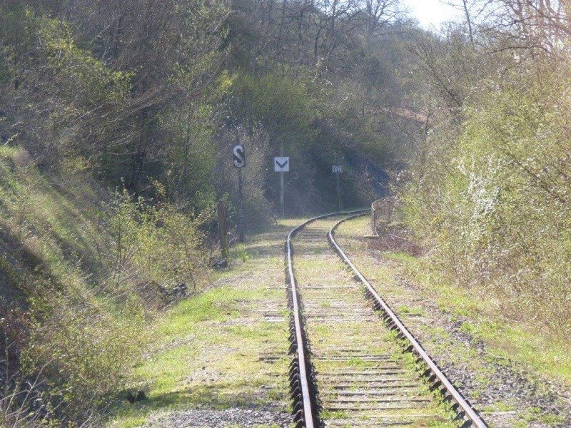 Le Train de l'Albret sur les rails ? - Page 2 44p12710