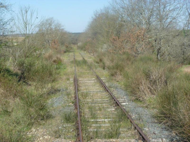 Le Train de l'Albret sur les rails ? - Page 2 6p127012