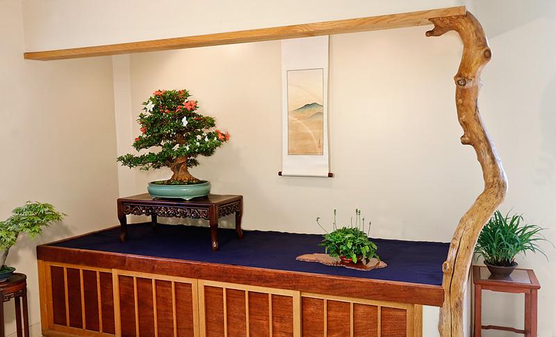 a spring display Satsuk11