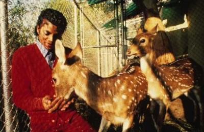 Collection MJ-Story : Michael et les animaux ^^ - Page 7 51ckrz10