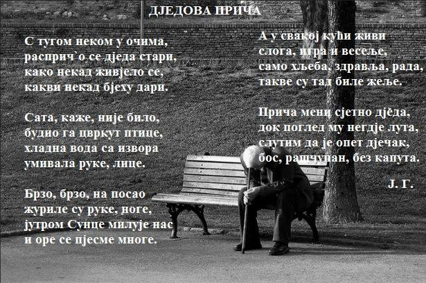 Јелена Глишић 14590811