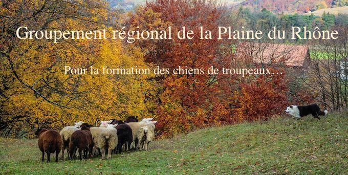 Le site des passionnés de chiens de bergers du Valais romand.