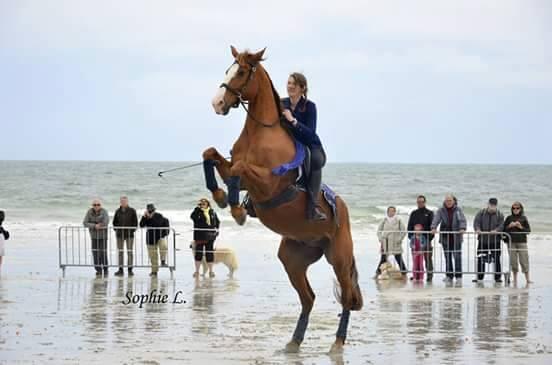 Présentation Equestre-Fête de Nivot jeudi 14 Mai 2015 Anne_s10