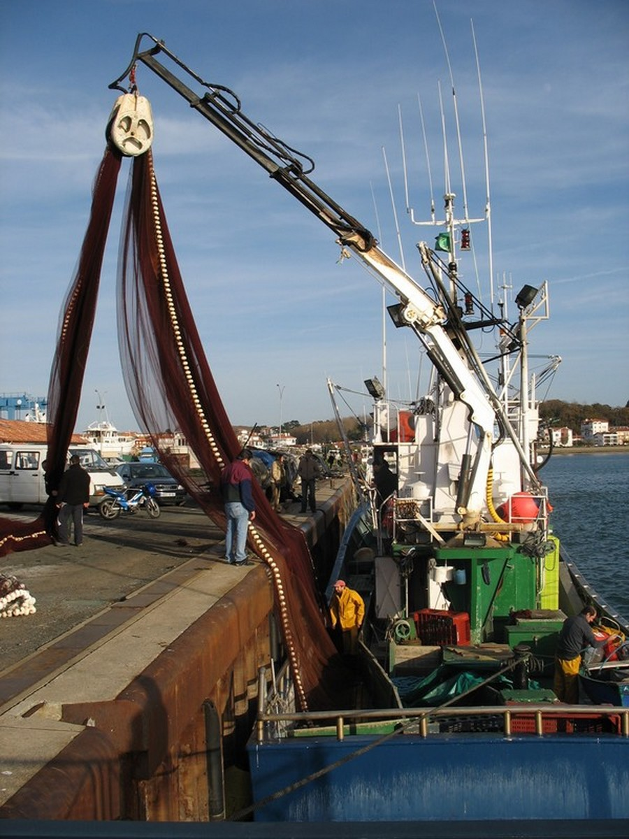 Le Port d'Hendaye. 211