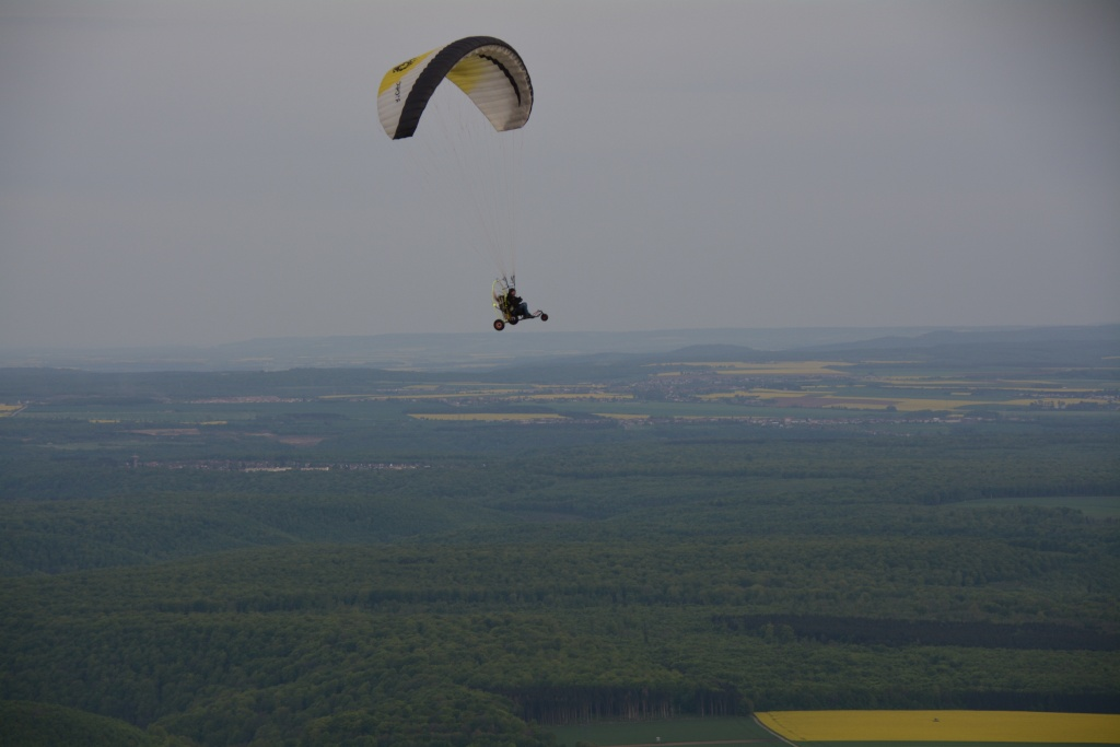 Vol au de dessus du colza (et de Giosé !) Dsc_0111
