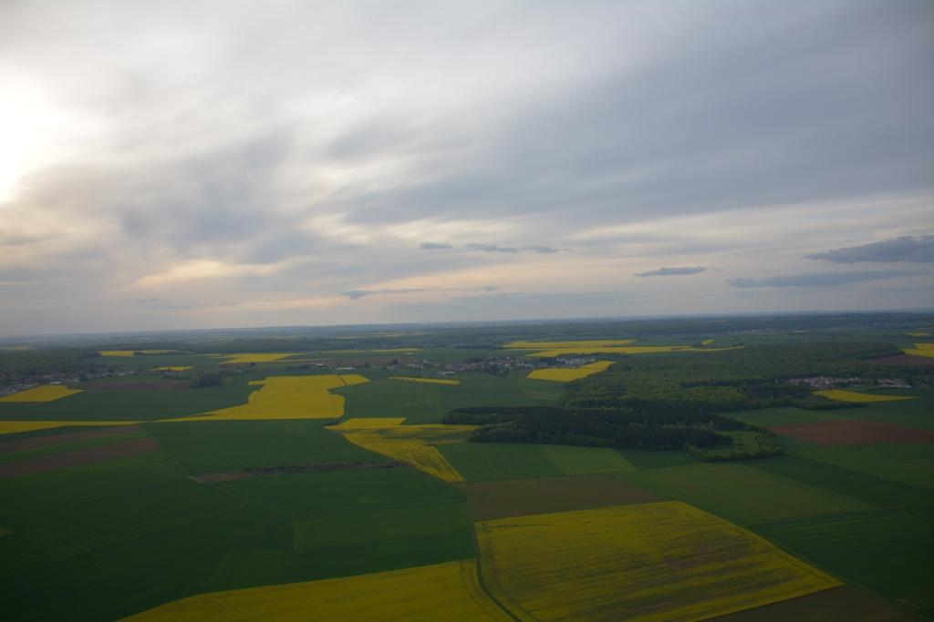 Vol au de dessus du colza (et de Giosé !) Dsc_0113