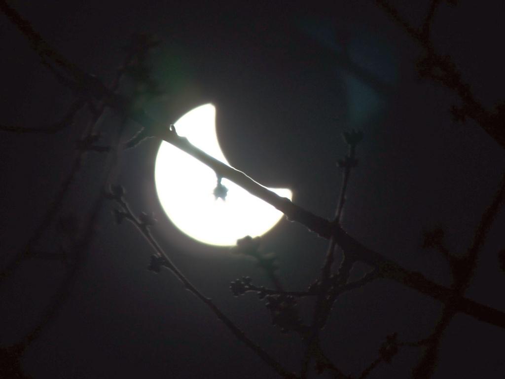 L'éclipse! 10_0010