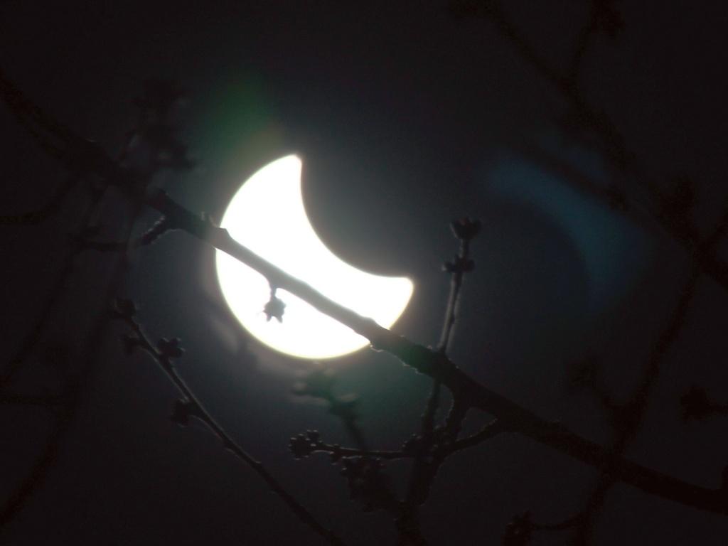 L'éclipse! 10_0110