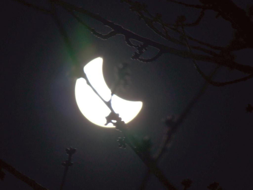 L'éclipse! 10_0410