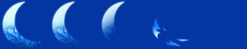 animations recolorées, animations trouvées sur Usui. Effect16