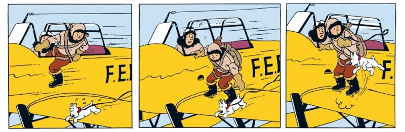 "TERMINE / Arado 196 A-3 version ""Tintin"" - 1/32 - Kit Revell 04688 C0944c10"