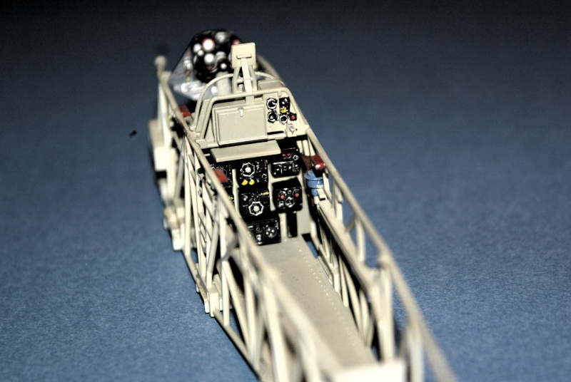 "TERMINE / Arado 196 A-3 version ""Tintin"" - 1/32 - Kit Revell 04688 Dsc04926"