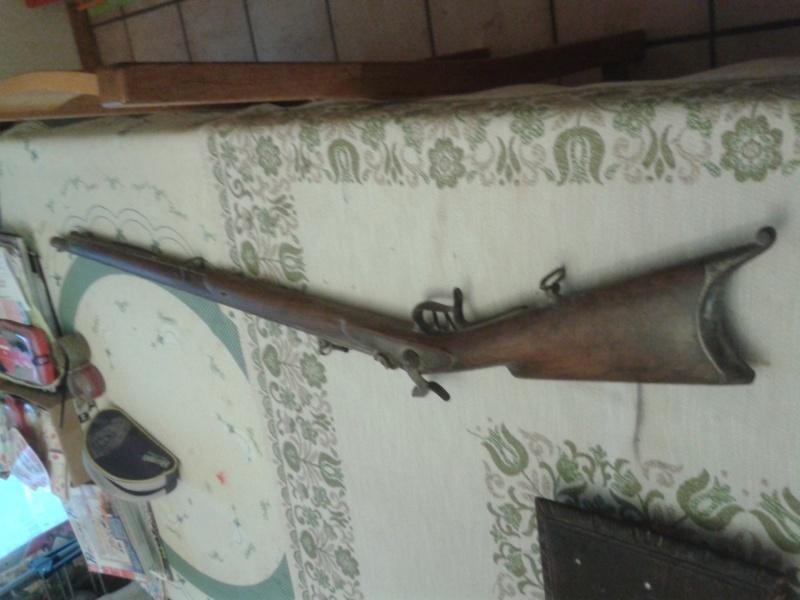 ma carabine fédérale suisse  20150423