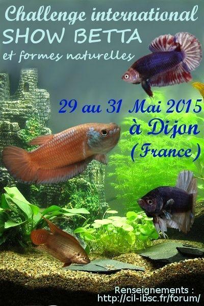 Congrès CIL-IBSC Dijon / 29-31 mai 2015 Affich10