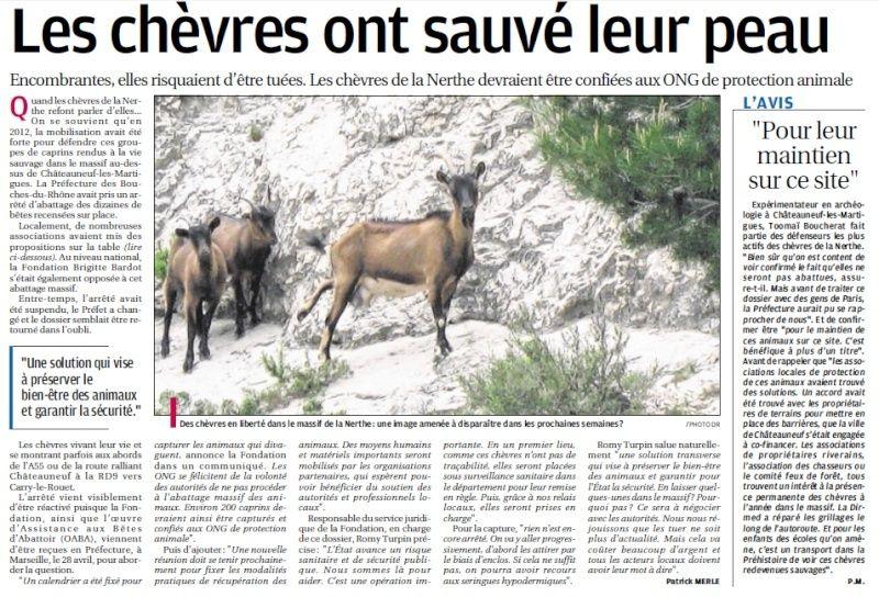LA FAUNE ANIMALE MEDITERRANEENNE - Page 13 4032
