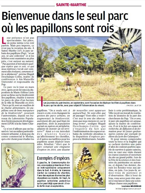 LA FAUNE ANIMALE MEDITERRANEENNE - Page 12 4116