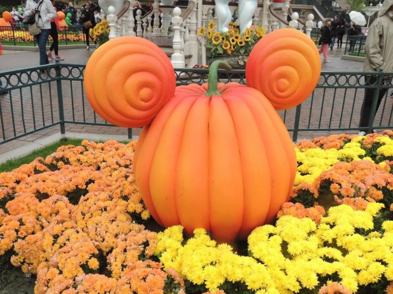 Halloween 2015 - Du 1er Octobre au 1er Novembre Gftrzy10