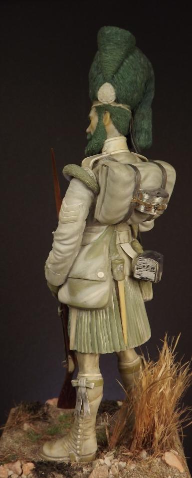 Colour Sergeant of the 93rd. Balaclava 1854. 007ab10