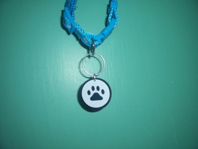 Médailles pour chien  100_4112