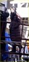 Angelina fazendo mais cenas de SALT,em frente o rio Hudson,em NY 29.12.09 Angeli31