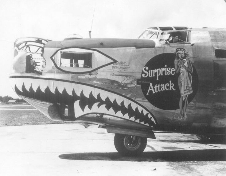 Nose art Surpri10