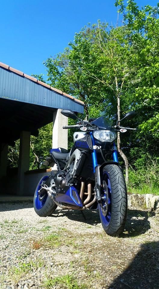 Ma MT-09 Race Blue 2015  15596010