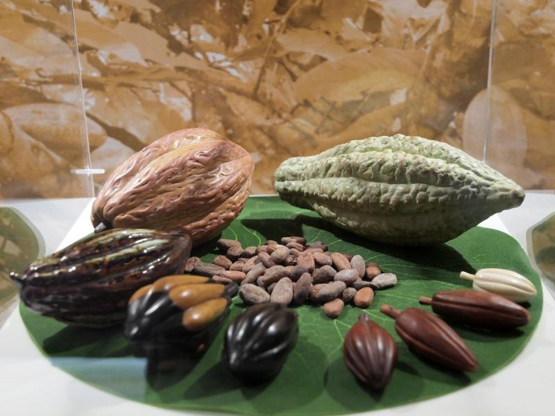 Le train du chocolat (Paris Gare de Lyon)  910