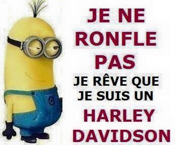 Humour en image du Forum Passion-Harley  ... - Page 5 Minion10