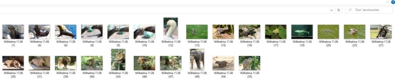 Probleme beim Fotos hochladen X710