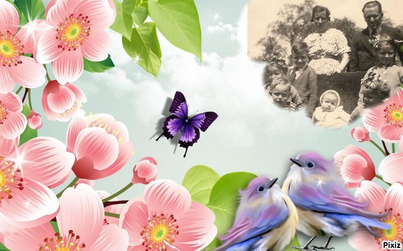 Montage de ma famille - Page 2 1ff1e810