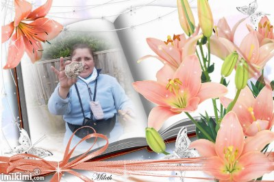 Montage de ma famille - Page 2 2zxda-11