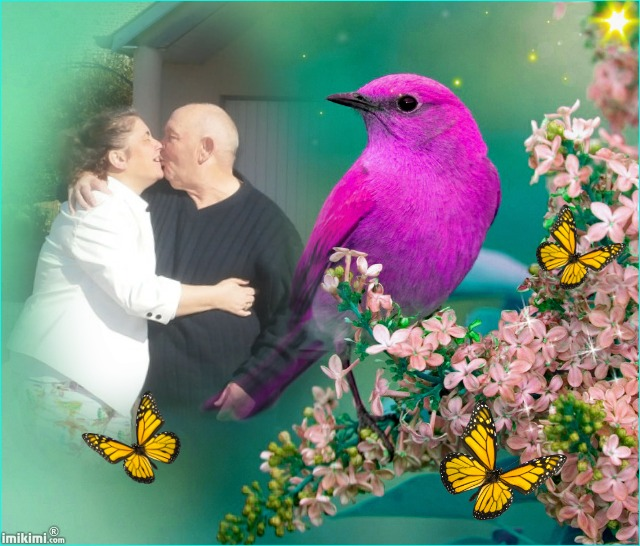 Montage de ma famille - Page 2 2zxda-67
