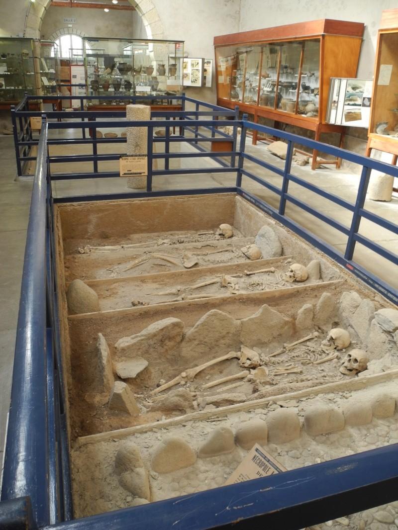 Musée de Préhistoire Finistérien 2711
