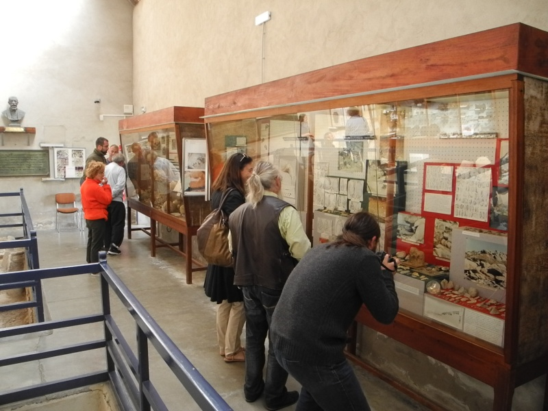 Musée de Préhistoire Finistérien Dscn5629