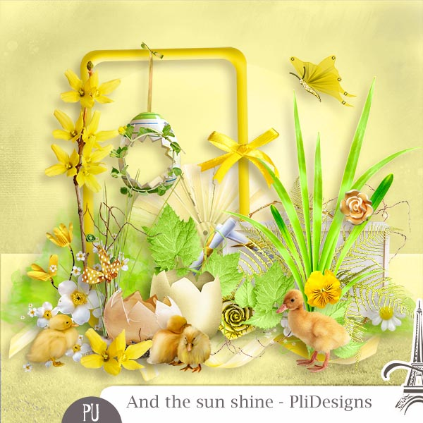 Les news chez Pliscrap - MAJ 23/6 the most beautiful day - Page 3 Plides15