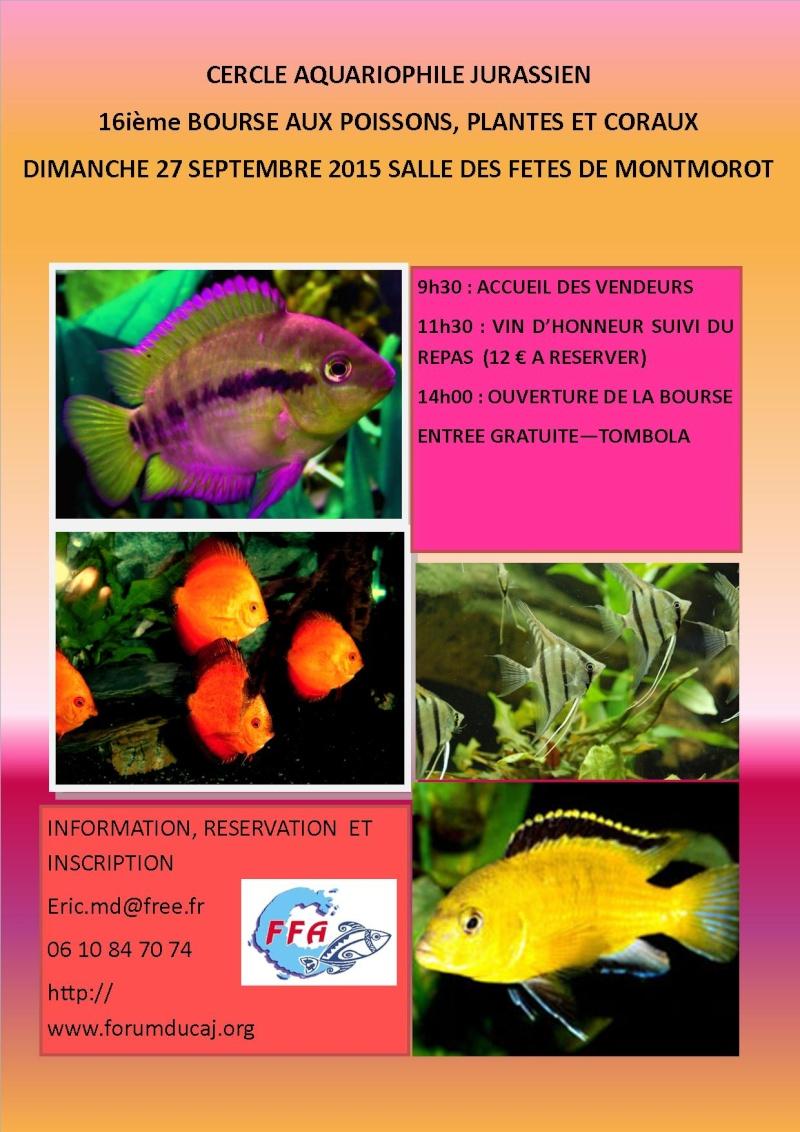 Concours pour l'affiche 16ème bourse aux poissons Affich14