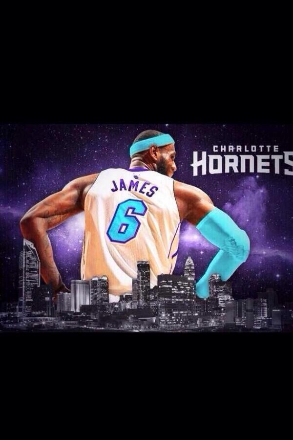 Charlotte Hornets (Greenflo) 201610