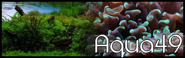 Aqua49, Aquariophilie Eau douce et Eau de mer