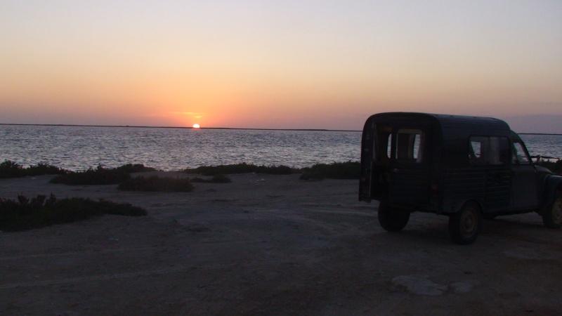 Rèves - Tunisie en Acadyane By PP 2015 - Page 3 Dsc01910