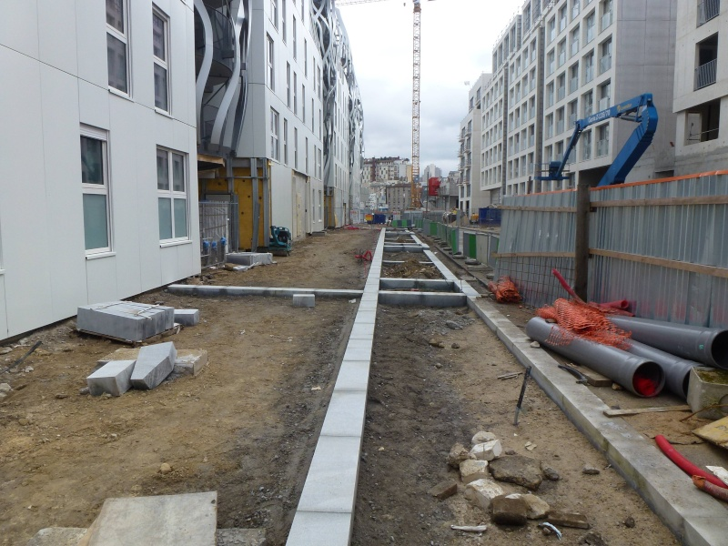 Rue Marcel Bontemps - Page 2 P1340421