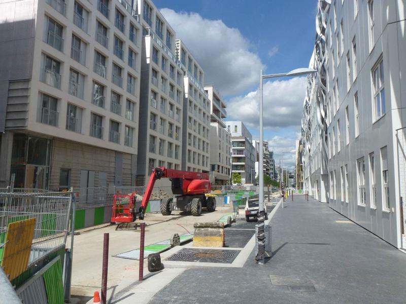 Rue Marcel Bontemps - Page 2 P1360627