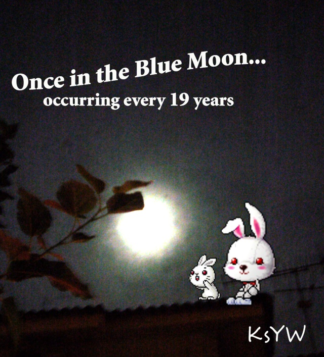 Once in a BlueMoon~<3 Bluemo11