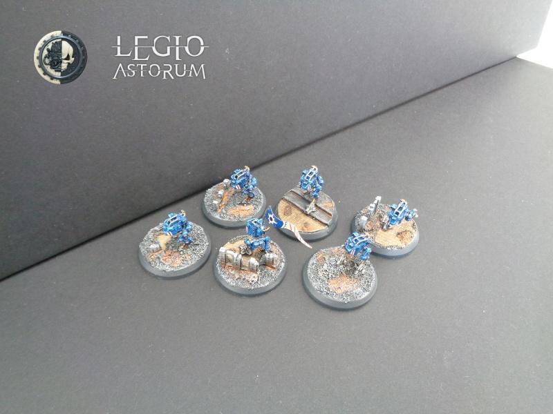 [CDA5] Egel - Legio Astorum (AMTL) 4000 points - EA Dsc00110