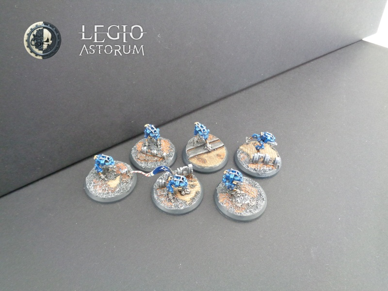 [CDA5] Egel - Legio Astorum (AMTL) 4000 points - EA Dsc00111