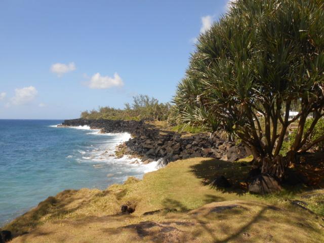 Sur la route des laves entre Saint Pierre et Sainte Rose La Réunion sud  Dscn6910