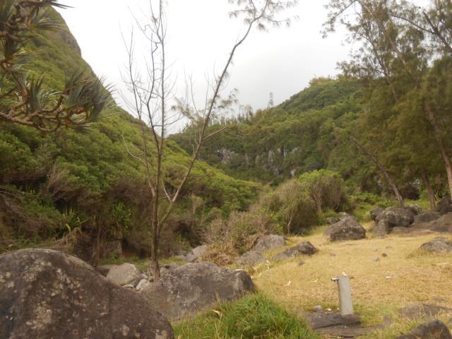 La Réunion : une ravine  Dscn7019