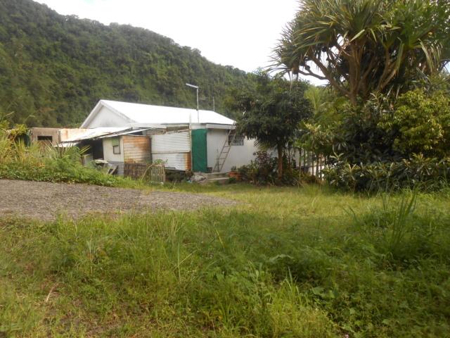 La rivière Langevin, La Réunion Dscn7122